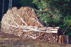 Artistic Wood Pile
